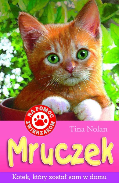 Mruczek - kotek, który został sam w domu