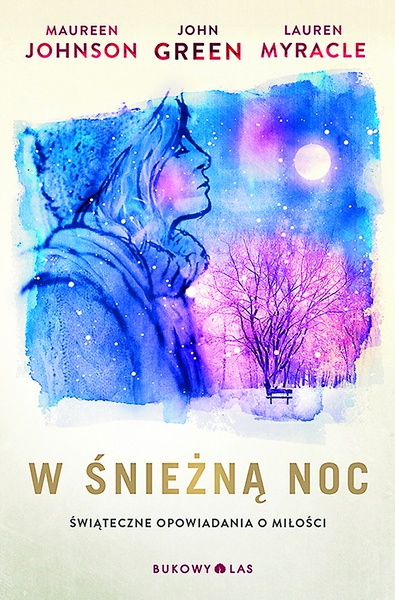 W śnieżną noc