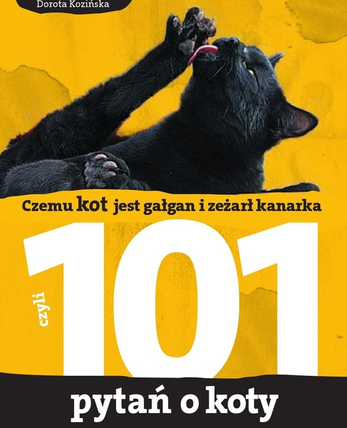 Czemu kot jest gałgan i zeżarł kanarka. 101 pytań o koty