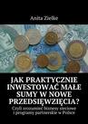 ebook Jak praktycznie inwestować małe sumy w nowe przedsięwzięcia? - Anita Zielke