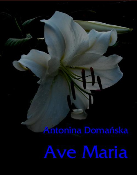 Ave Maria - wzruszająca opowieść