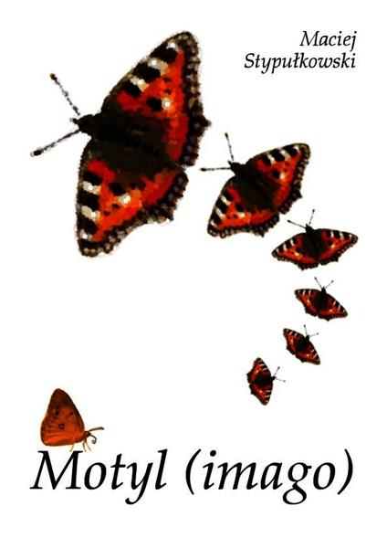 Motyl (image)