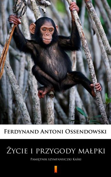 Życie i przygody małpki