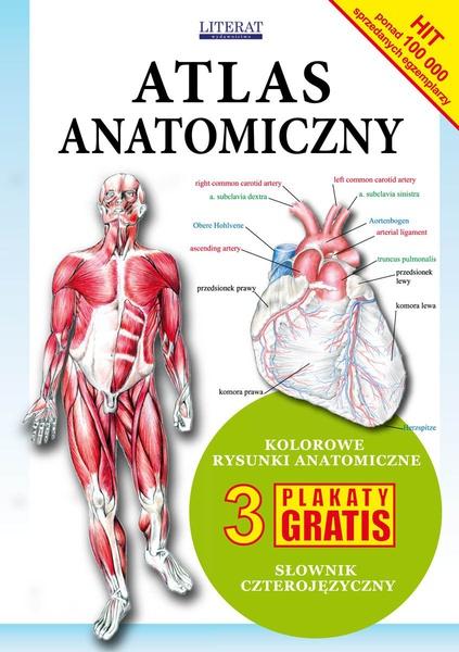Atlas anatomiczny