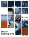 ebook Sklepy cynamonowe - Bruno Schulz